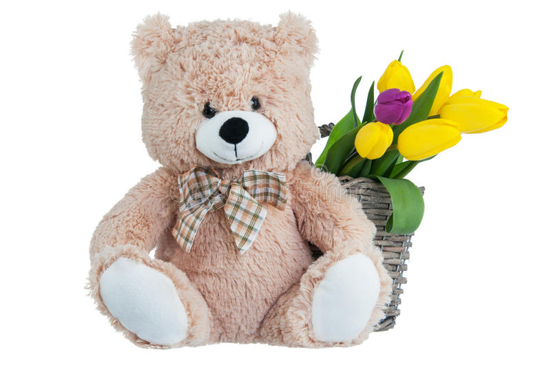 Yellow tulips and a teddy bear stock images