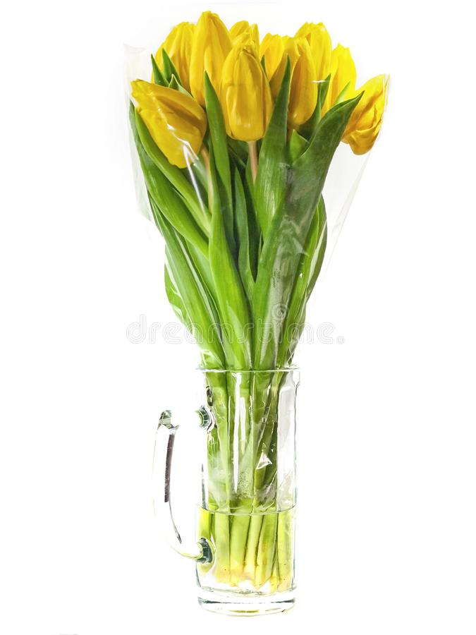 Yellow tulips in vase isolated royalty free stock photos