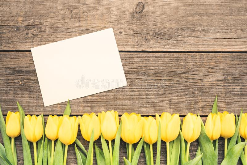 Yellow tulips with a white envelope lie on the boards. Fresh, yellow tulips arranged at the bottom of the frame. In the middle there is a card with the stock photos