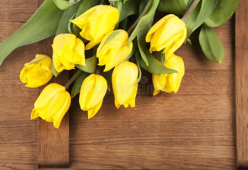 Download Yellow Tulips Royalty Free Stock Photo - Image: 30706075