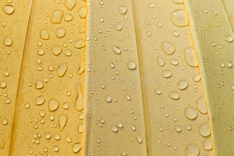 Yellow umbrella , drop. Water drops on white umbrella material during rain, close-up stock images