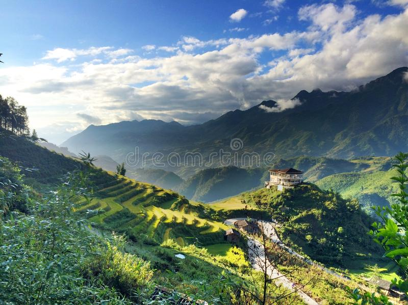 Yellow valley 3. The Cat cat village was being colred in the sunrise with the yellow of rice terraced stock photography
