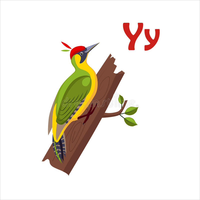 Yellow Wagtail. Funny Alphabet, Animal Vector Illustration. Yellow Wagtail. Funny Alphabet, Colourful Animal Vector Illustration stock illustration