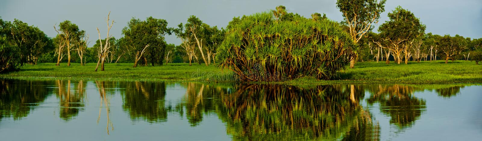Yellow Water. Is part of the South Alligator River floodplain within the Kakadu National Park. A boardwalk provides good views of 's wildlife. When the waters stock photo
