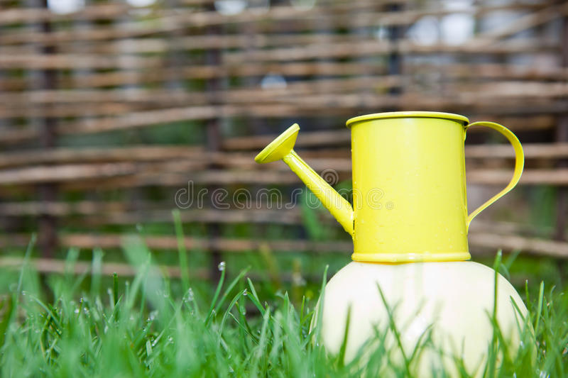 Yellow watering can on an apple on background stock photo