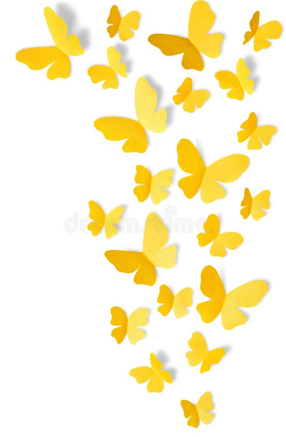 Yellow butterflies on white background stock images