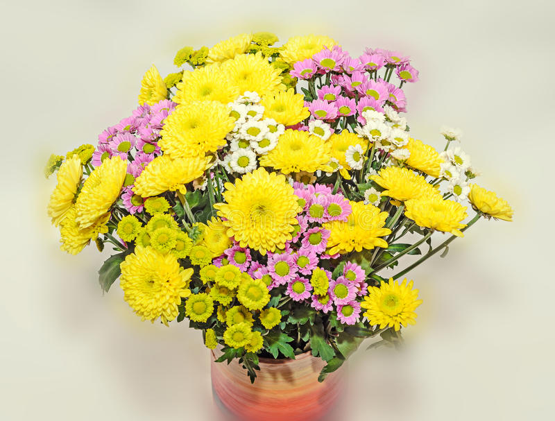 Yellow, white and mauve Chrysanthemums bouquet flowers. Floral arrangement with mums or chrysanths, colored case, close up royalty free stock photos