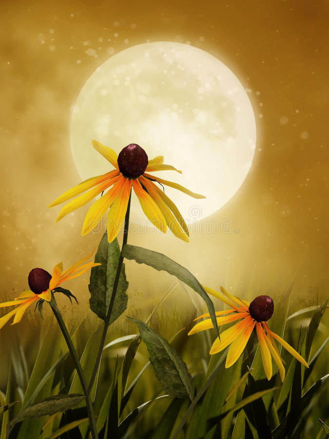 Download Yellow wildflowers stock illustration. Image of garden - 19399718