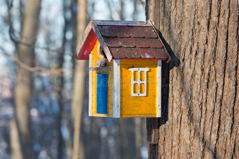 Yellow wood birdhouse with blurred background in spring. The wood birdhouse on the tree close-up stock images