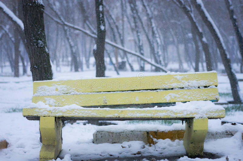 Yellow Wooden Bench During Winter Free Public Domain Cc0 Image