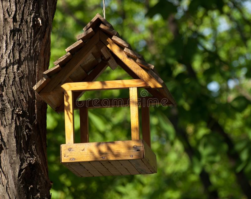 Bird feeder hanging on the tree. Yellow wooden bird feeder in the shape of a house hanging on a tree on a background of green leaves stock image