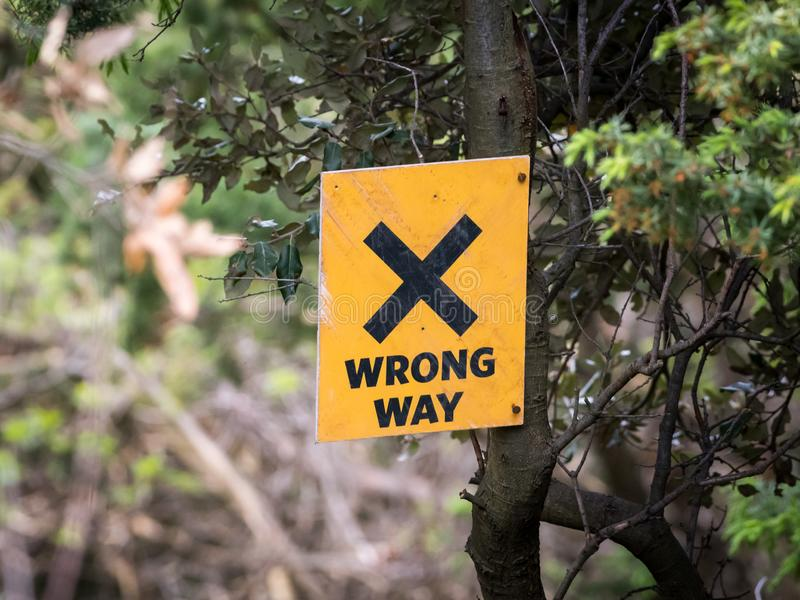 A yellow wrong way sign hanging on a tree royalty free stock photo