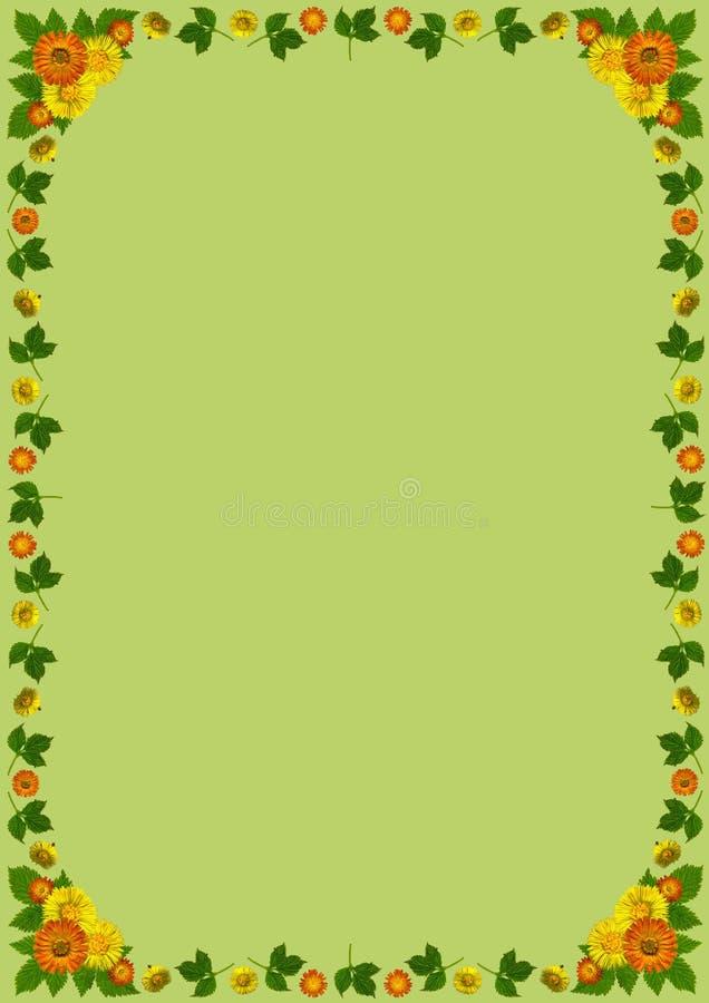 YellowBlossomsFrameDinGreen1 διανυσματική απεικόνιση