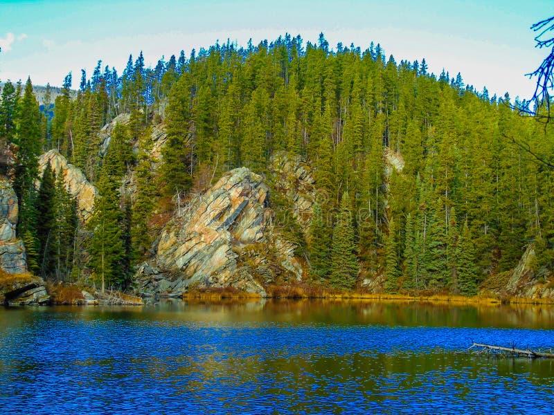 Yellowhead śladu góry Robson prowincjonału park, kolumbiowie brytyjska obraz stock