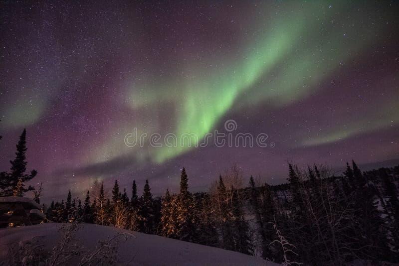Yellowknife Aurora Delight verde invernal fotografia de stock royalty free