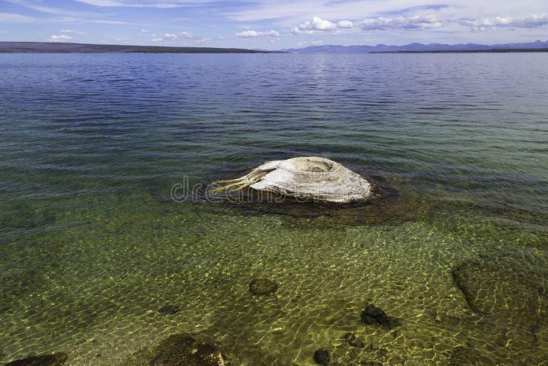 Yellowstone湖和喷泉 免版税库存图片
