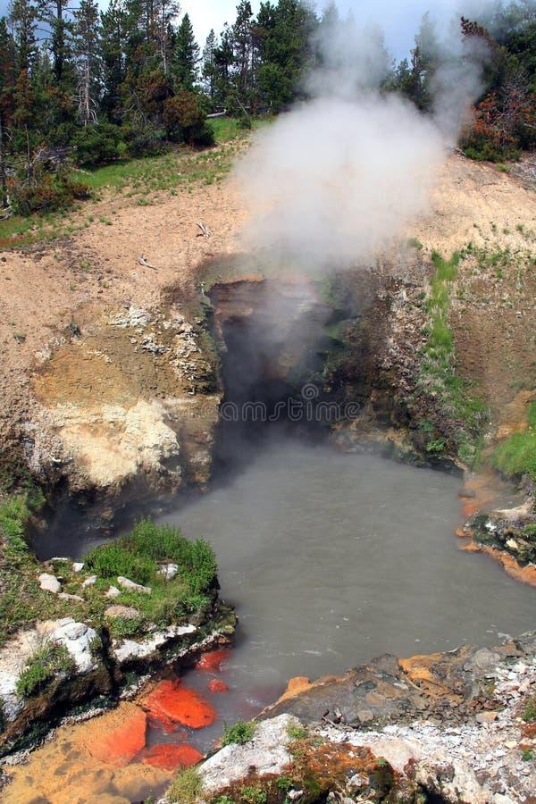 yellowstone άνοιξη στοματικών εθνι&kappa στοκ φωτογραφίες