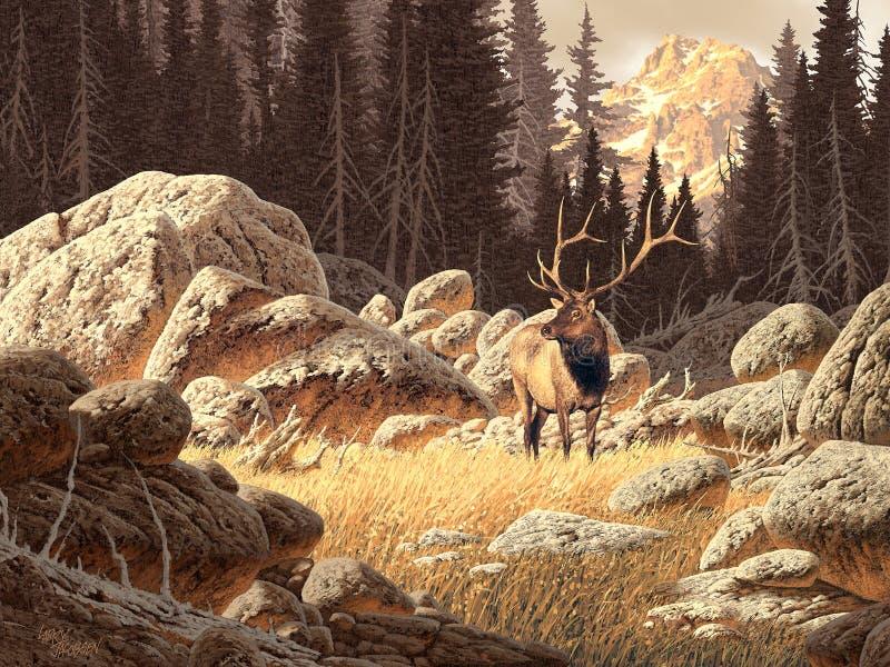 yellowstone αλκών στοκ φωτογραφίες