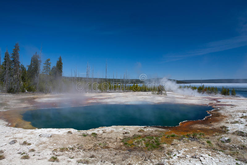 Yellowstone obrazy royalty free