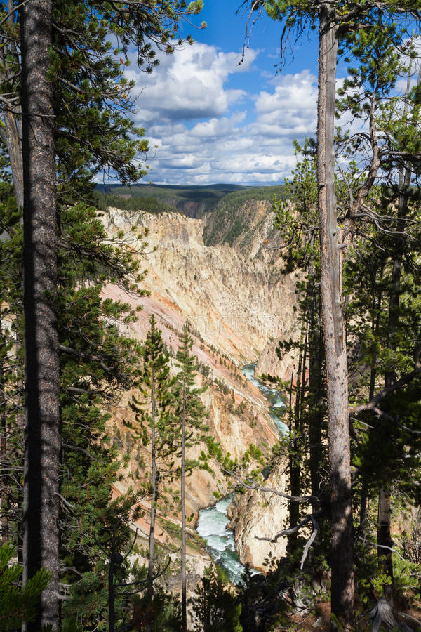Yellowstone Canyon as seen from the Grand View lookout stock photography