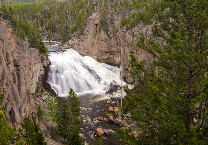 Yellowstone canyon river waterfall in Wyoming USA royalty free stock photography