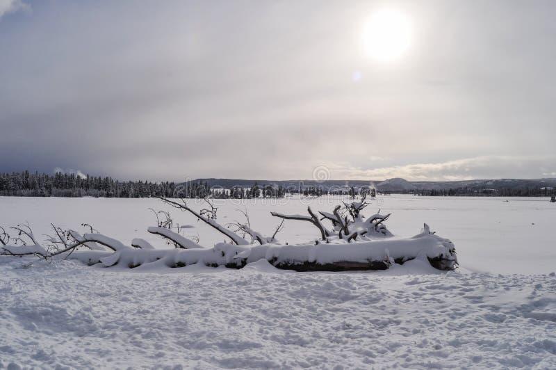 Download Yellowstone en invierno foto de archivo. Imagen de nubes - 42444414