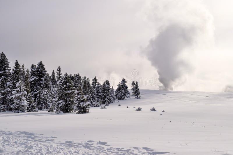 Download Yellowstone en invierno foto de archivo. Imagen de fumaroles - 42444498