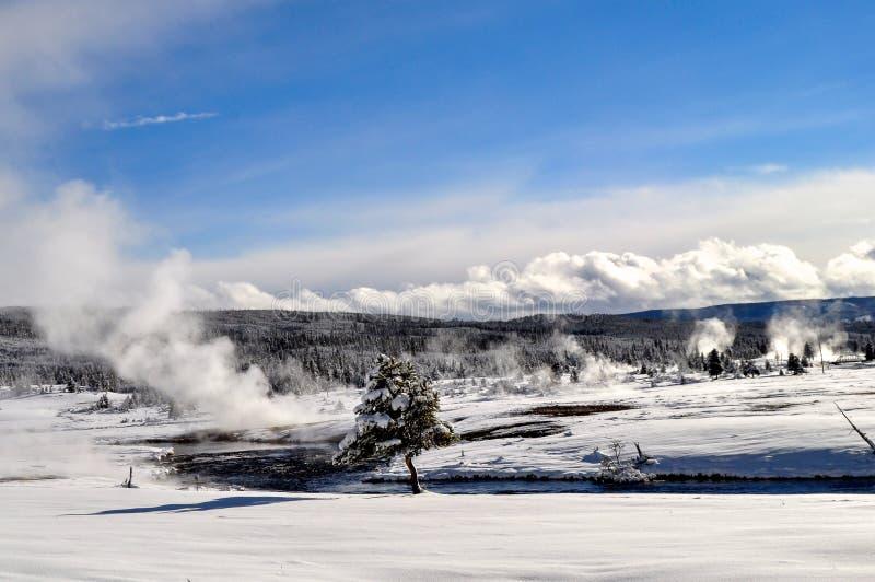Download Yellowstone en invierno foto de archivo. Imagen de escénico - 42444580