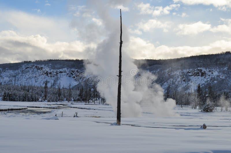 Download Yellowstone en invierno imagen de archivo. Imagen de fumaroles - 42444685