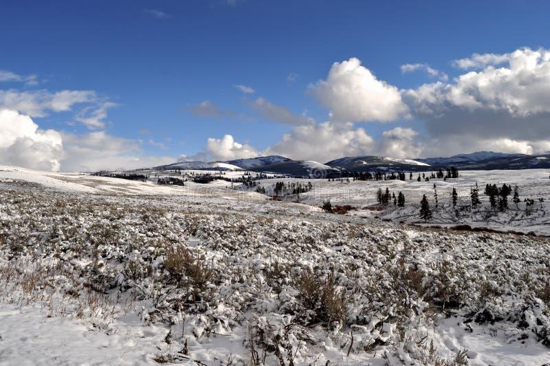 Download Yellowstone en invierno foto de archivo. Imagen de fumaroles - 42445004