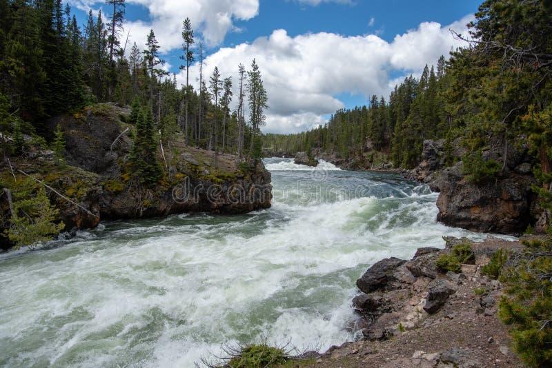 Yellowstone forsar arkivfoto