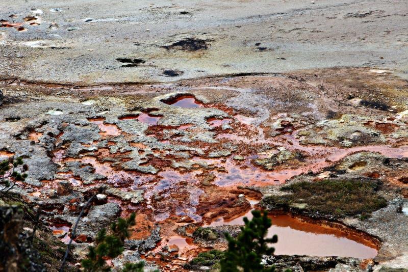 Yellowstone Geotermiczny basen fotografia stock