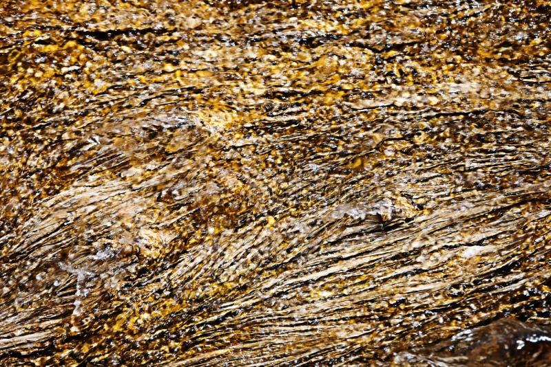 Yellowstone Geotermiczny zbliżenie obraz stock