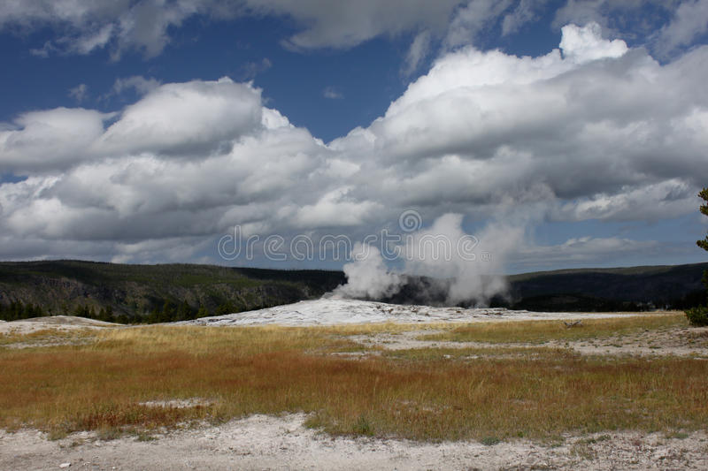Yellowstone Geyser royalty free stock image