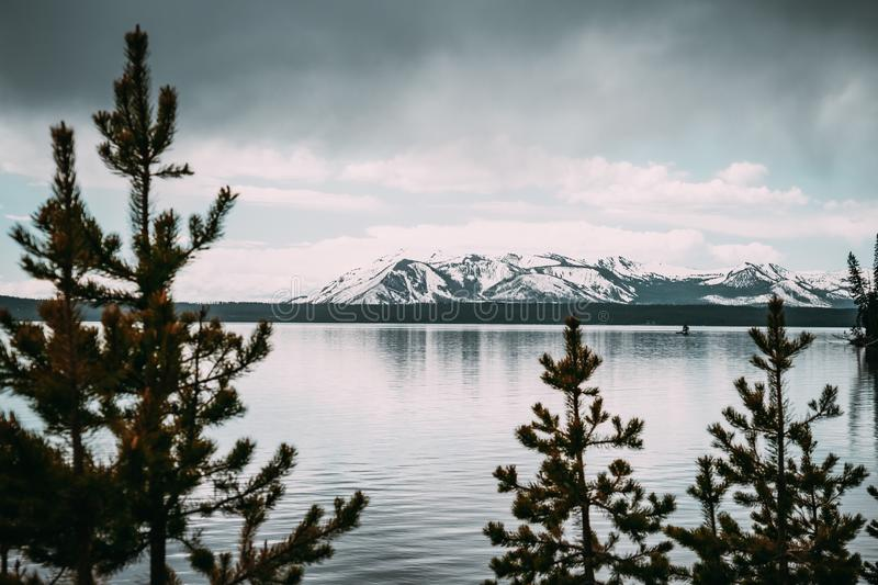 Yellowstone Lake, the largest high alpine lake in North America, framed by tree branches, looking out to the Teton Mountains on. A chilly spring day, in stock image