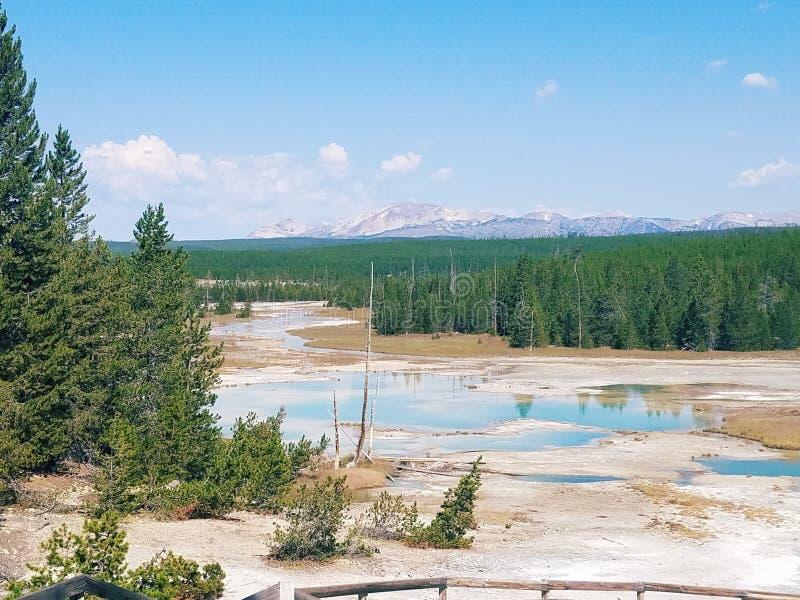 Yellowstone mineraler i vatten royaltyfria foton