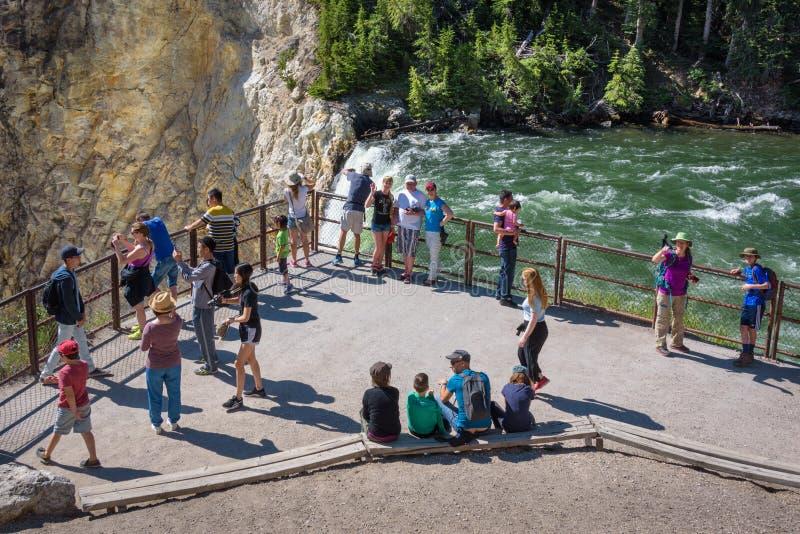 YELLOWSTONE NATIONAAL PARK, WYOMING, DE V.S. - 17 JULI, 2017: Toeristen die en op beelden van Lagere Yellowstone-Dalingen letten  royalty-vrije stock afbeeldingen