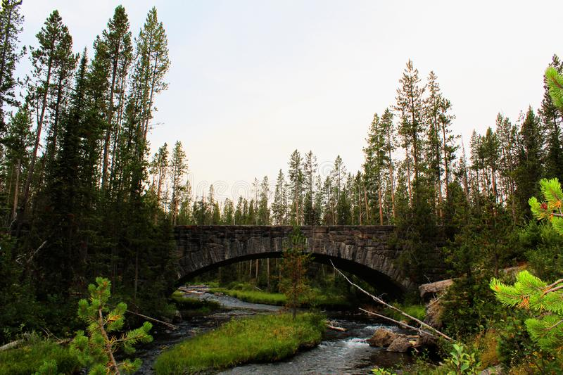 Yellowstone National Park Beautiful Bridge with rocks and moss and woodlands gorgeous colors royalty free stock photography