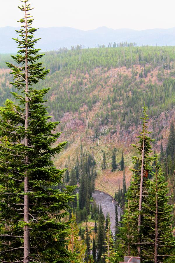 Yellowstone National Park Beautiful cliffs with rocks and moss and woodlands stock photo