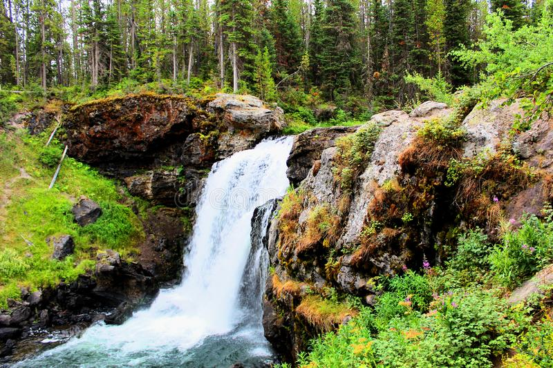 Yellowstone National Park Beautiful Waterfall with rocks and moss and woodlands gorgeous colors royalty free stock photography