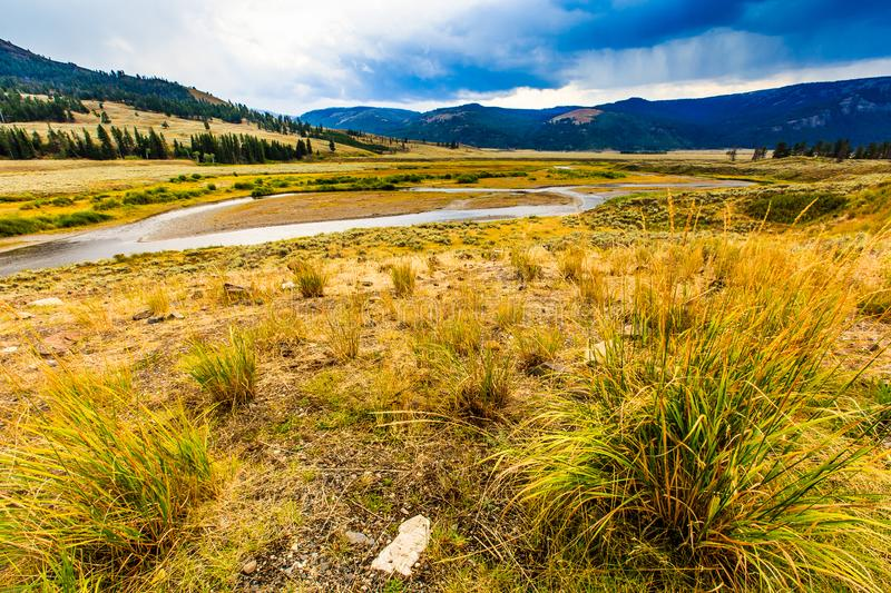 Yellowstone National Park Cloudy Landscape royalty free stock image