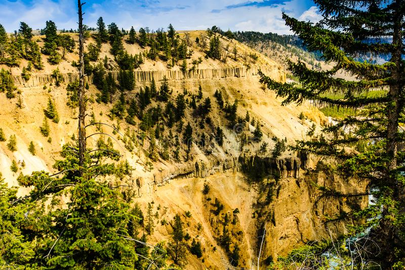 Yellowstone National Park Landscape Scene royalty free stock photography