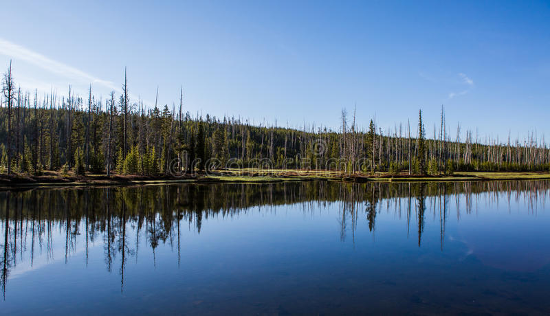 Yellowstone National Park Panorama. Yellowstone National Park is a national park located primarily in the U.S. state of Wyoming, although it also extends into royalty free stock image