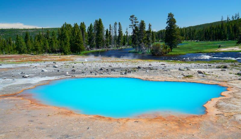 Yellowstone National Park royalty free stock photo