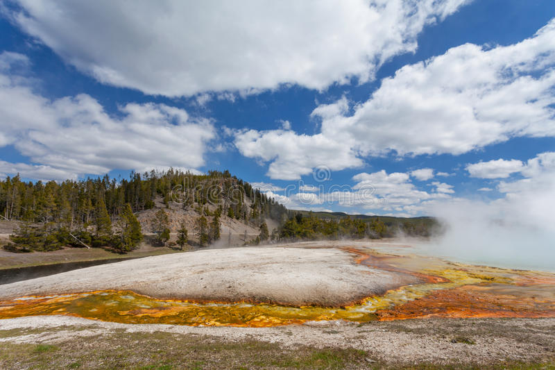 Yellowstone National Park Wyoming. USA royalty free stock photography