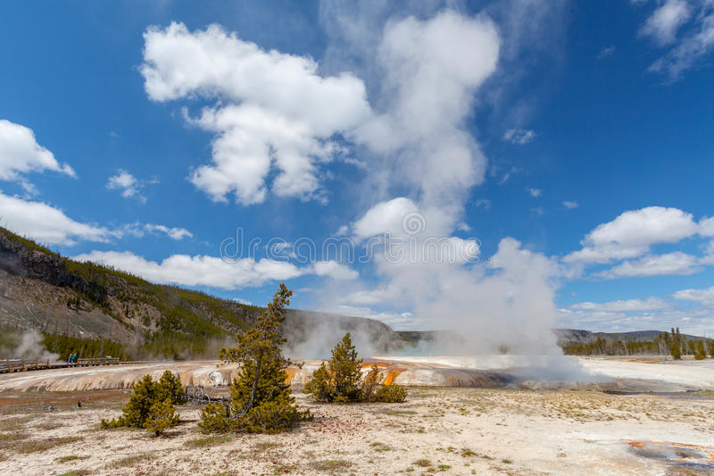 Yellowstone National Park Wyoming. USA stock images
