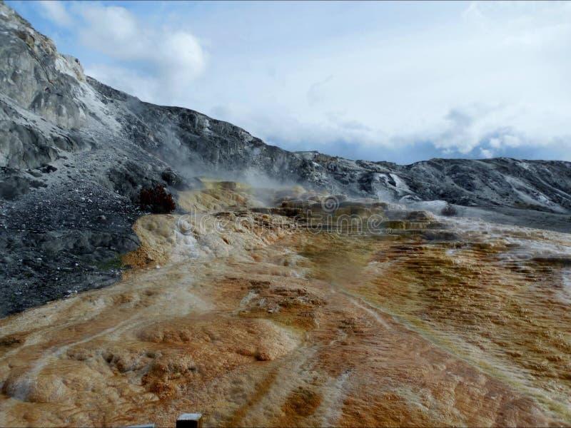 Yellowstone nationalpark arkivbild
