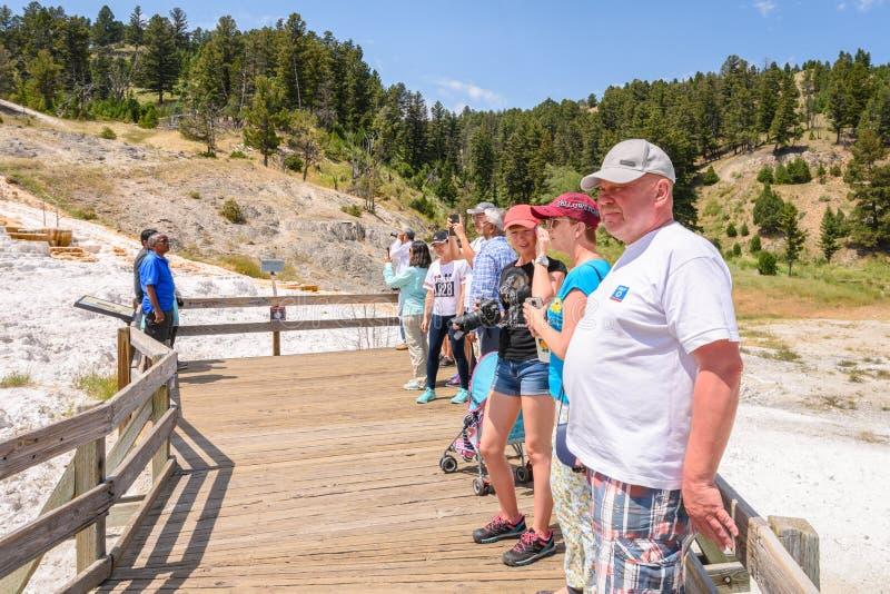 YELLOWSTONE NATIONALPARK, WYOMING, USA - 17. JULI 2017: Touristen auf Promenade aufpassender Paletten-Frühlings-Terrasse Heißer M lizenzfreie stockbilder