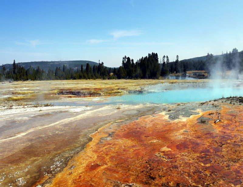 Yellowstone Nationalpark, Wyoming, Vereinigte Staaten stockfotografie