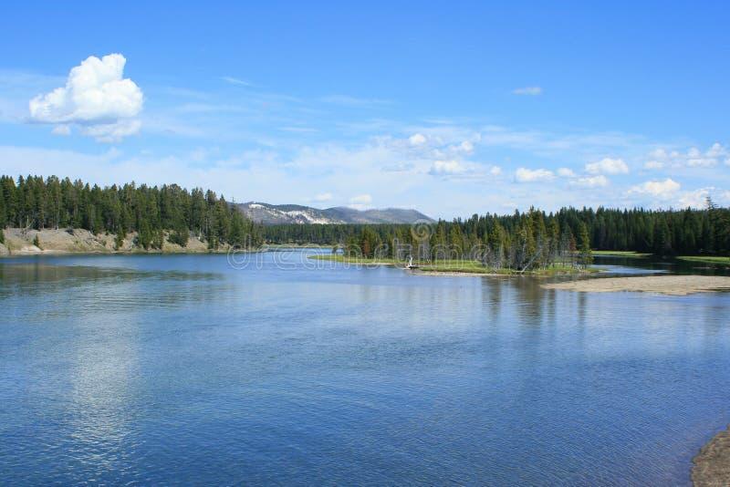 Yellowstone nationalparkflod arkivfoton